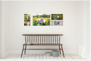 Colonial Heights Virginia Family Photography Wall