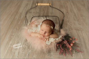 petersburg va newborn photographer