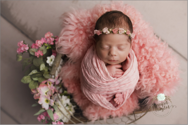 chesterfield-newborn-photographer-4